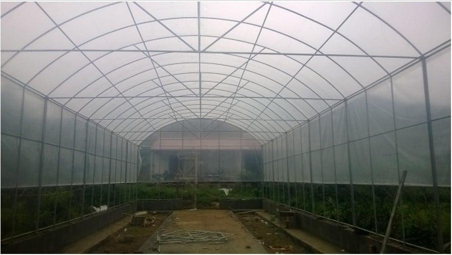 Mô hình nhà lưới trồng rau- Lợi Dân
