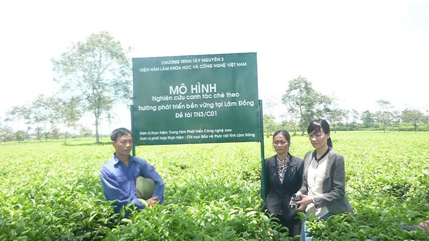 Nông nghiệp hướng sinh thái bền vững tại Lâm Đồng - Lợi Dân