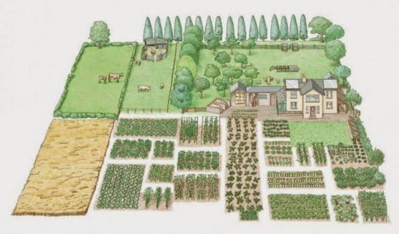 Mô hình nông nghiệp sinh thái xanh sạch đang là xu hướng mới - Lợi Dân