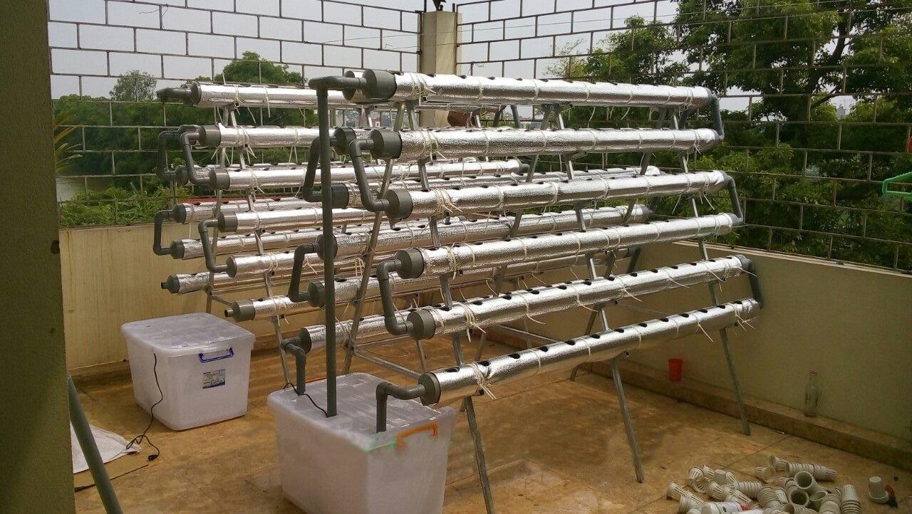 Kệ trồng rau chữ A trên sân thượng.
