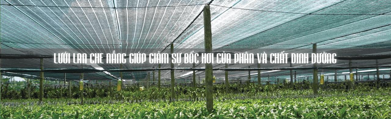Lưới che nắng để tránh tình trạng bốc hơi nước, phân bón và chất dinh dưỡng trong trộn đất trồng cây.
