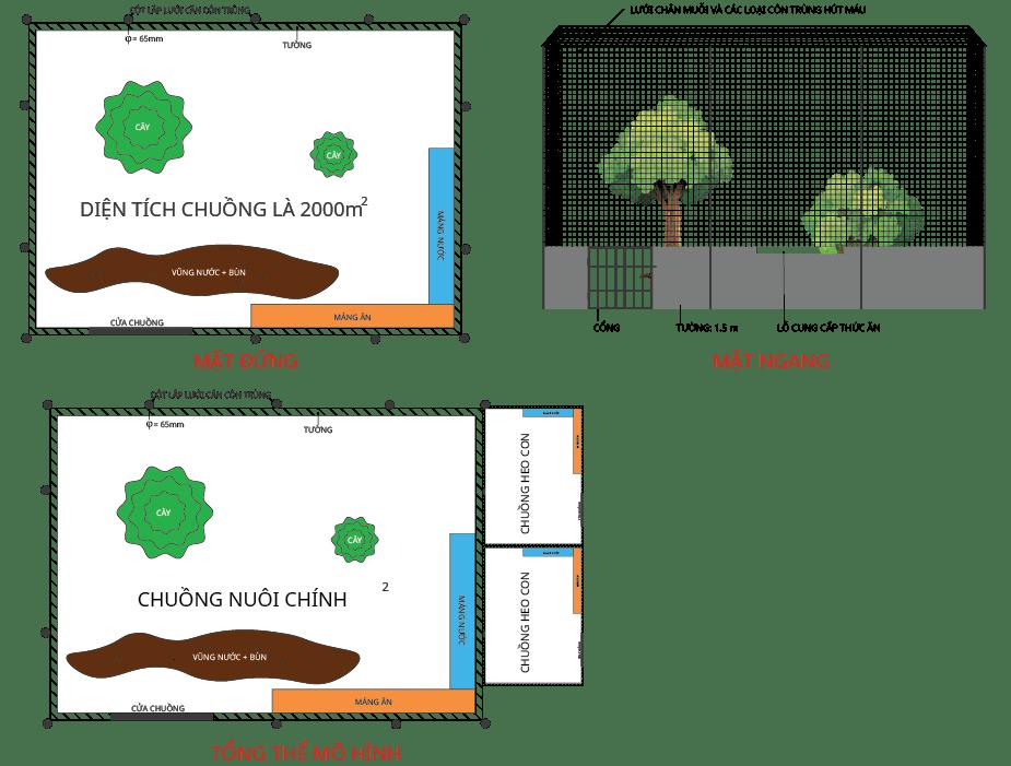 Sơ đồ xây chuồng trong kỹ thuật nuôi heo rừng.