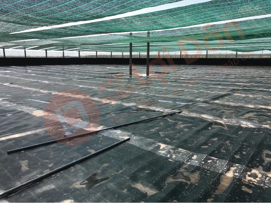 Bạt lót hồ nuôi tôm dày, bền, độ kéo đứt đâm thủng cao còn kháng hóa chất và chống UV.