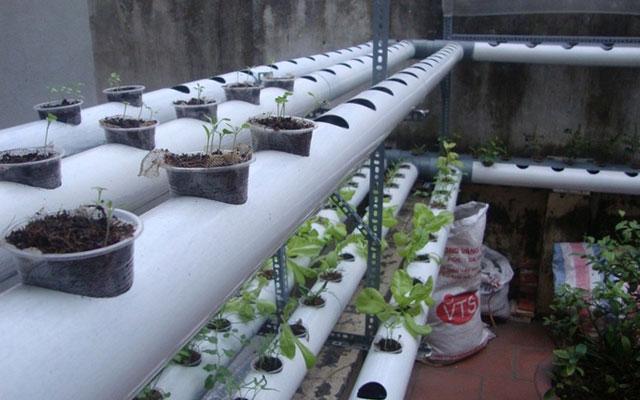 Thành phẩm giàn trồng rau bằng ồng nhựa.