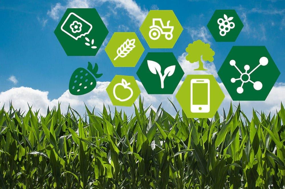 Áp dụng khoa học kỹ thuật và công nghệ cao trong nông nhiệp.
