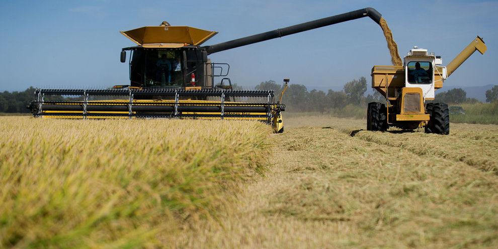 Dùng máy móc hiện đại để thu hoạch nông sản.